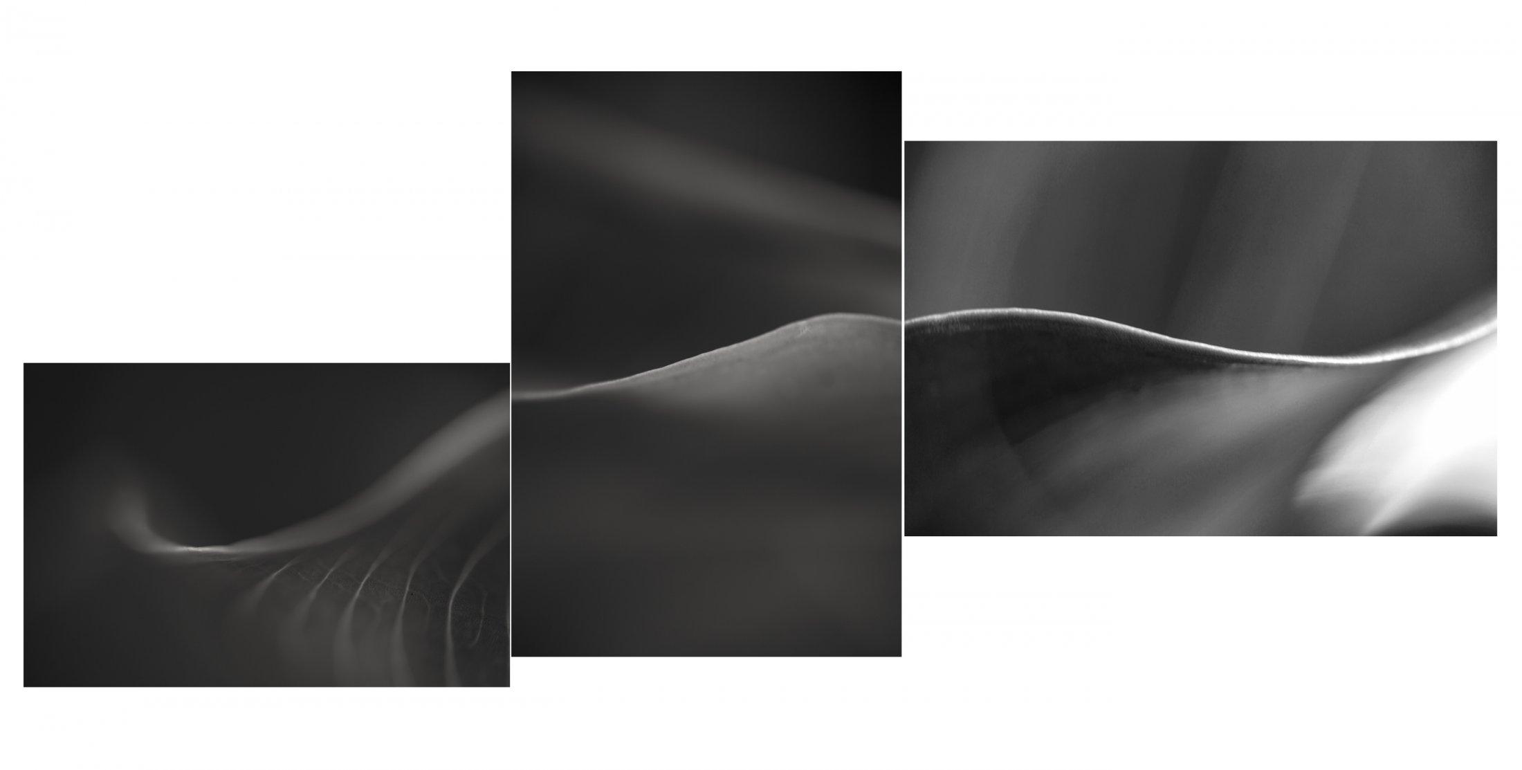 046 - Texturas