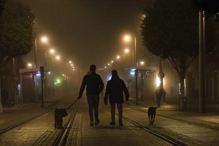 Niebla en la noche
