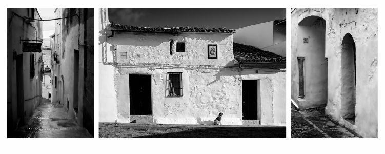 010 - Blanco