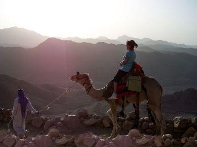 Al amanecer en el Sinaí