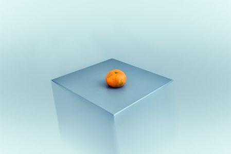 Exaltación de la mandarina