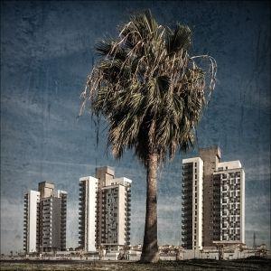 Bodegon urbanistico
