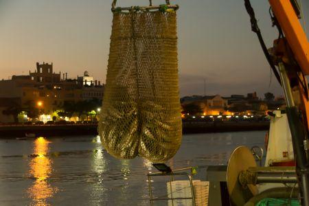 Noche de mar y río