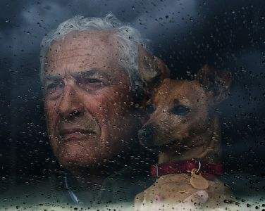 Contemplando la lluvia