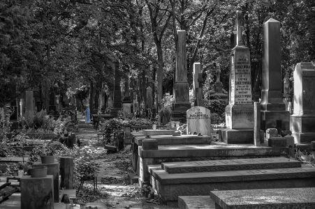 La dama del cementerio
