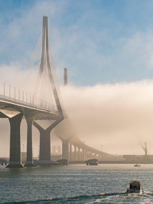 Puente con niebla