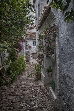 Un rincón de Castellar